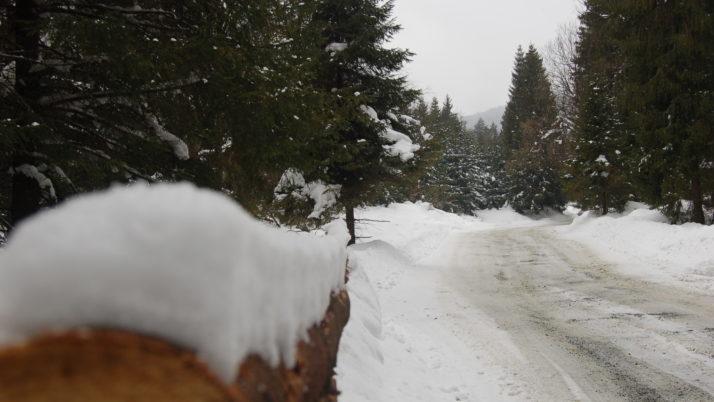 XV Ogólnopolskie Mistrzostwa Narciarskie i Snowboardowe